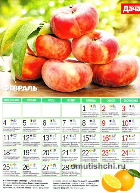 Лунный календарь 2013 года посевной - Февраль