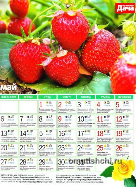 Лунный календарь 2013 года посевной - Май
