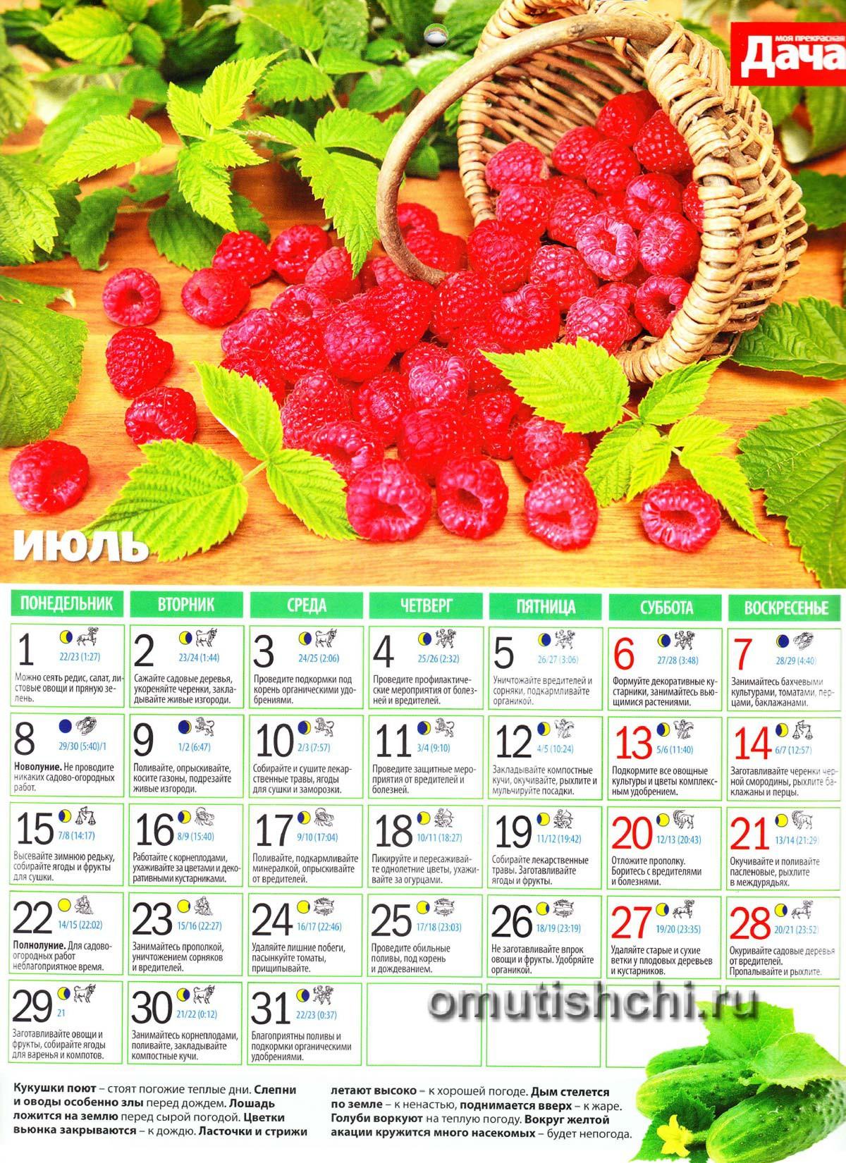 Календарь садовода крыма