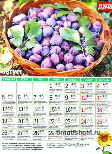 Лунный календарь 2013 года посевной - Август