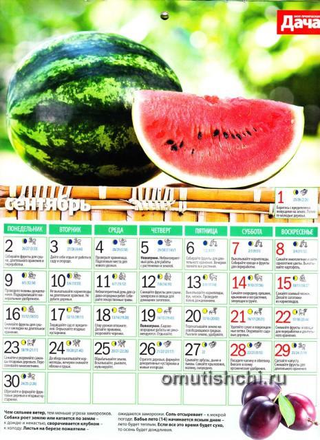 Лунный календарь 2013 года посевной - Сентябрь