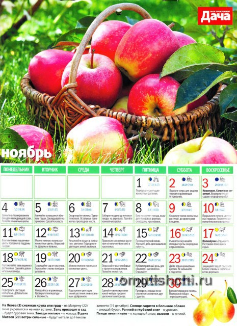 Лунный календарь 2013 года посевной - Ноябрь
