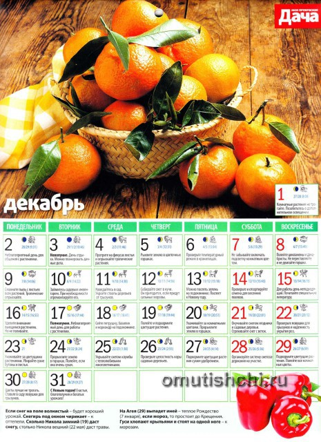 Лунный календарь 2013 года посевной - Декабрь