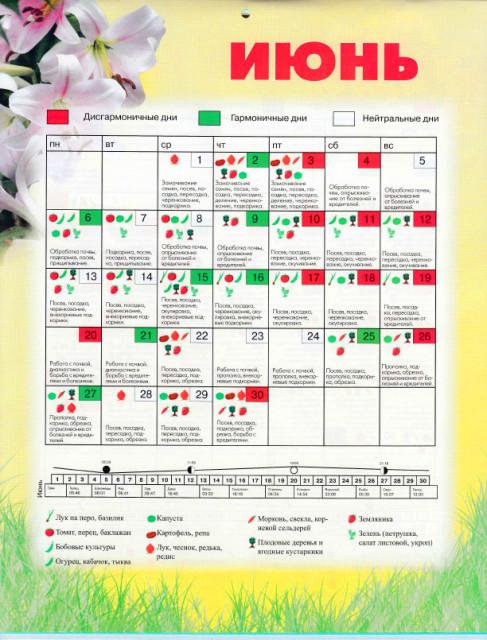 Лунный календарь садовода и огородника на 2016 год