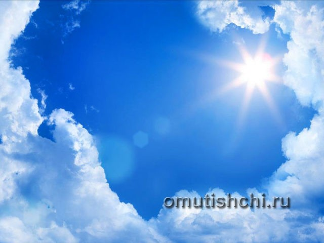 Солнечный день лето 2017 года